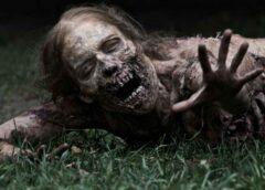 La fórmula para revitalizar el género zombi